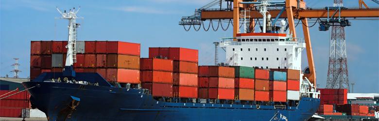 Importkompetenz
